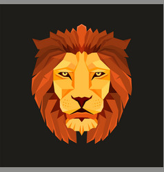 Lion head low poly design creative logo elements vector