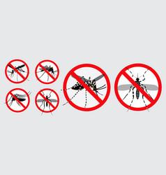 set aedes aegypti or chikungunya or zika vector image