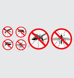set aedes egyptian or chikungunya or zika vector image