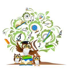 Study the tree and cheerful owls vector