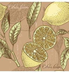 Vintage lemon seamless background vector image