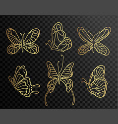set of butterflies butterfly icons isolated on vector image vector image