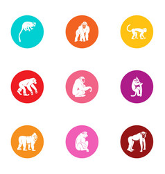 Anthropoid icons set flat style vector