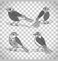 birds with doodle decoration vector image