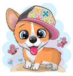 Cartoon dog corgi in a cap vector