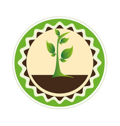 Decorative circular frame of plant with leaves vector