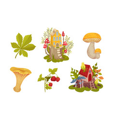 Forest fairy houses and botany with mushroom and vector