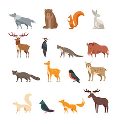 Forest wild animals and birds cartoon set vector