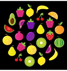 fresh tasty fruit circle isolated on black vector image
