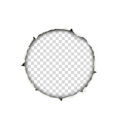 snatched round hole in paper sheet vector image
