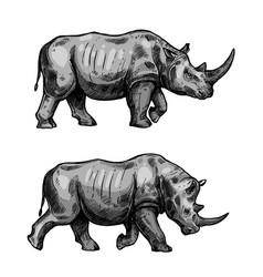 african rhino walking sketch of rhinoceros animal vector image vector image