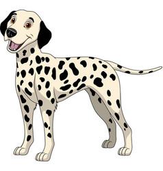 funny purebred dalmatian vector image