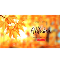 autumn sale banner template vector image