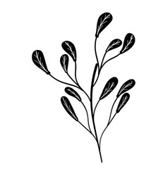 Beutiful plant with branch icon vector