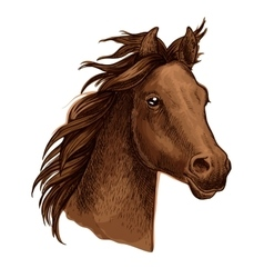 Brown horse portrait with waving mane vector