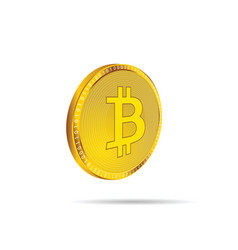 cryptocurrency coin in gold vector image