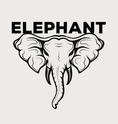 elephant icon logo vector image