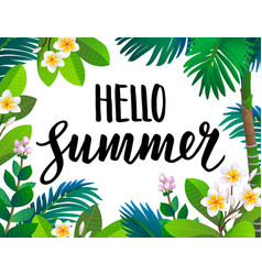summer banner template vector image