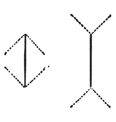 Visual line length multiple types ocular vector