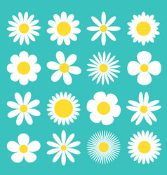 White daisy chamomile icon camomile super big set vector