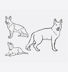 german shepherd dog pet animal sketches vector image vector image