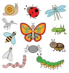 Insects in cartoon style vector image vector image