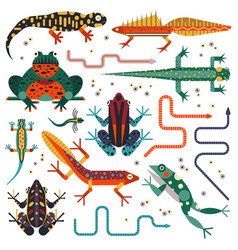 amphibians and frogs flat design animal set vector image