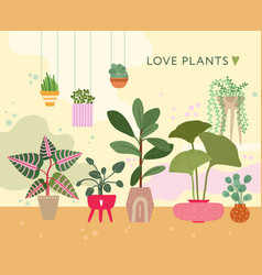 House plants green home floral succulents decor vector