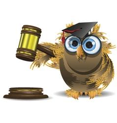 judge owl vector image