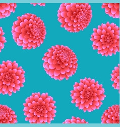 pink dahlia on blue background vector image
