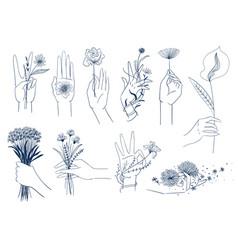 set elegant female hands with flowers vector image
