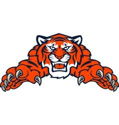 Tigers tiger vector