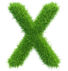 capital letter x from grass on white vector image vector image