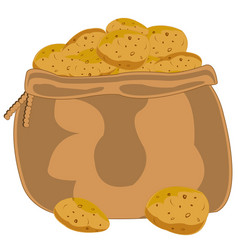 bag with potatoes vector image