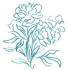 Beautiful peony bouquet vector image