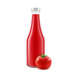 blank glass red tomato ketchup bottle for vector image