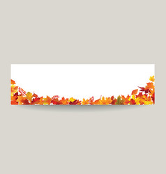 fall leaf nature banner autumn leaves season vector image