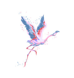 Flamingo flying isolated birds on white vector