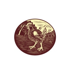 Hen farm oval woodcut vector