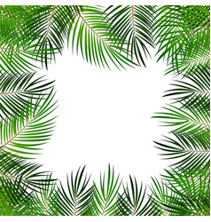 Palm leaf background with white fram vector