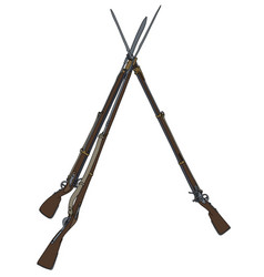 three vintage military rifles vector image