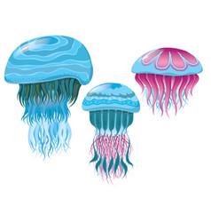 Various fantastic jellyfish vector