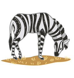 Zebra animal with stripped print on furry coat vector