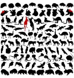 Animals australia vector