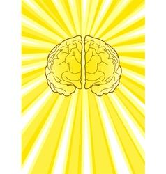 Bright Brain vector image