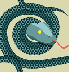 Snake seamless pattern Longest reptile Python vector image