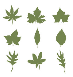 set of autumn leaves nature silhouette icon vector image