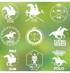Set of vintage horse polo club labels and badges vector image