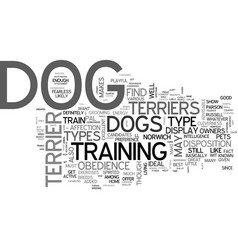 A glimpse on the various types of terrier dogs vector