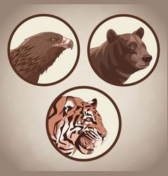 Eagle tiger and bear drawing vector